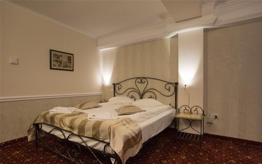 Aviator Butique Hotel - Dubla / Matrimoniala- Otopeni